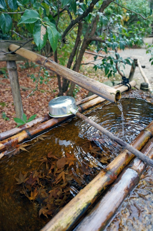 Acqua purificatrice