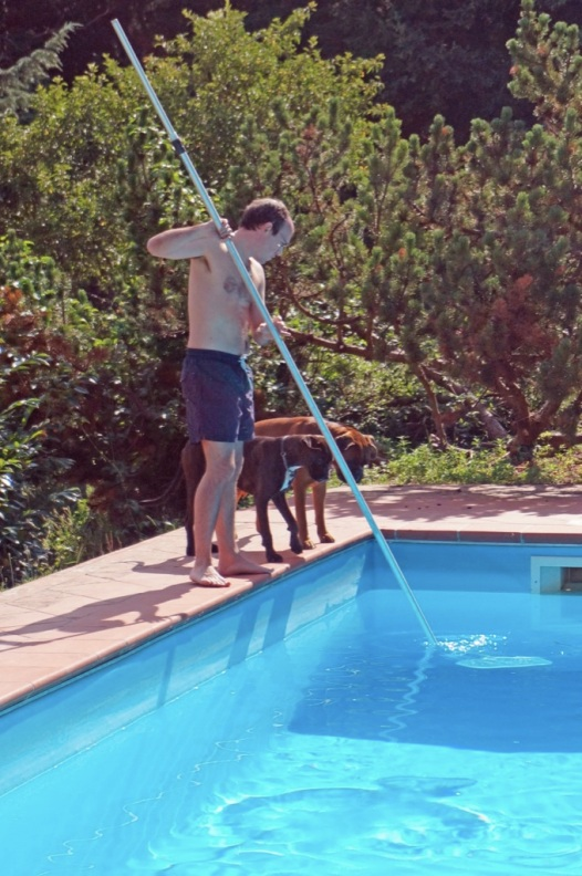 Cleaning the pool (with helpers)
