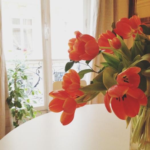 I tulipani che ho regalato a Mai